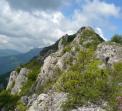 Гребен планина и  Погановски манастир  (Сърбия)